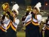 savanna band 21