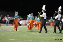 2013-11-6 Band Pageant