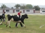 2015-02-21 Cow Chip Bingo